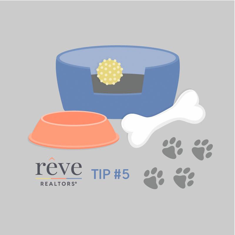 Reve Tip 5 Illustration